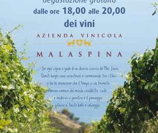 Azienda Vinicola Malaspina